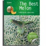 The Best Melon