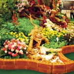 Amazing Horti Asia Fair Thailand Tour